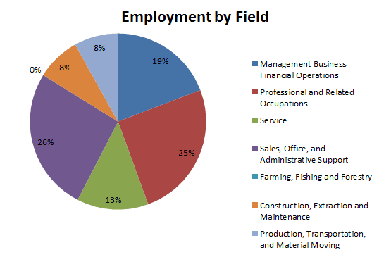 Employment By Field Jan 2017