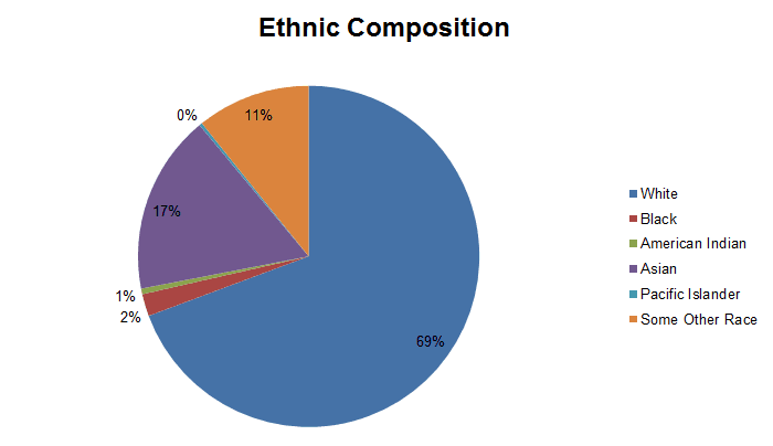 Ethnic Composition Graph for Demographics