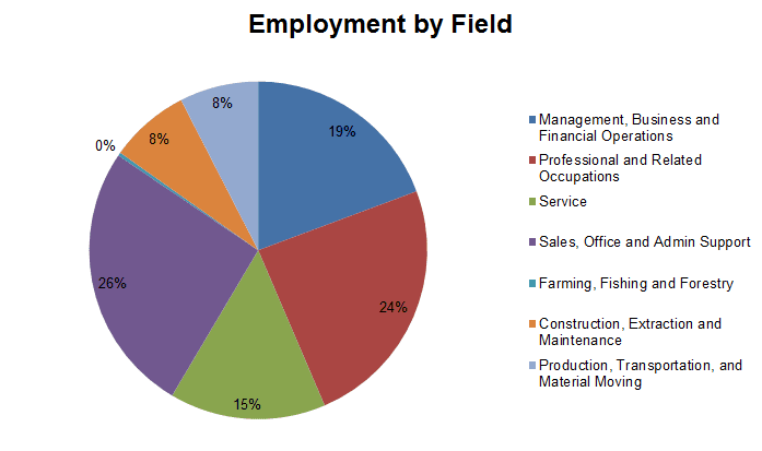 Employment Profile Graph for Demographics