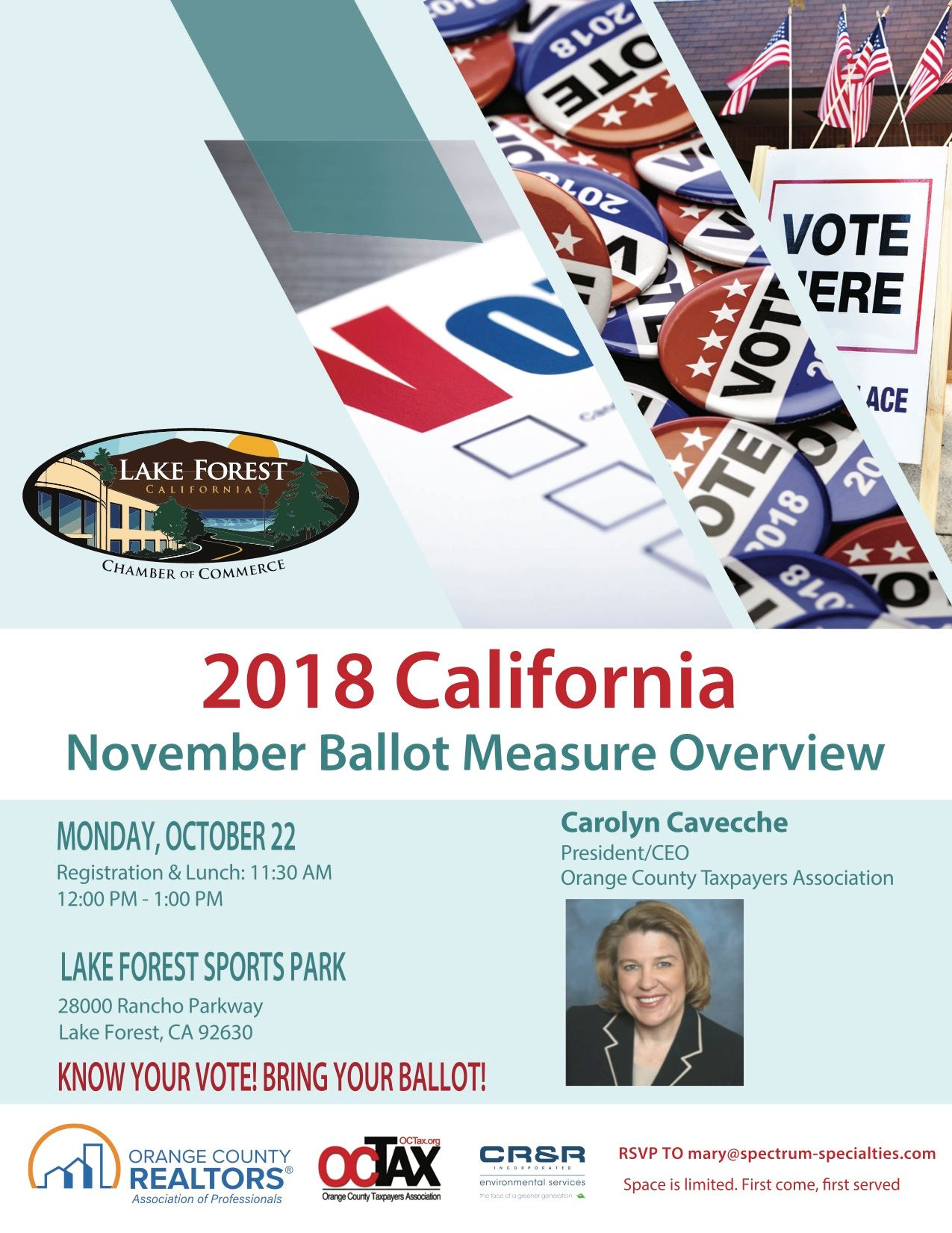 Ballot Measure Flyer