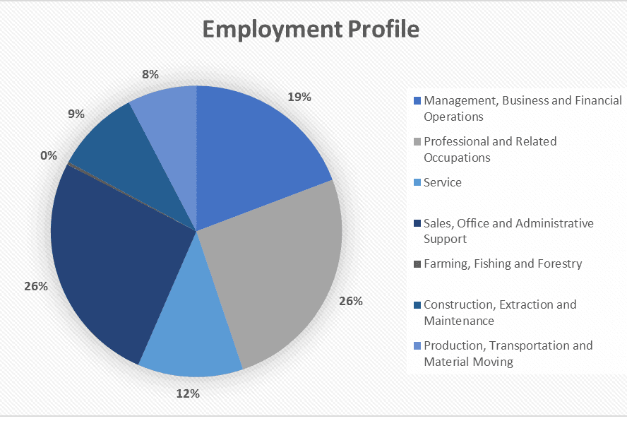 Employment Profile 2019