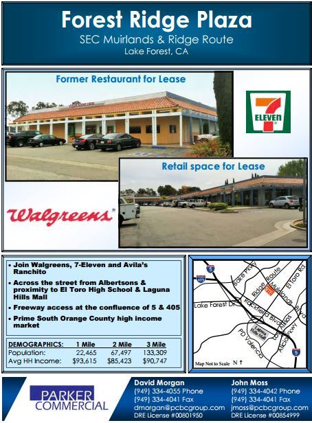 Forest Ridge plaza property flyer